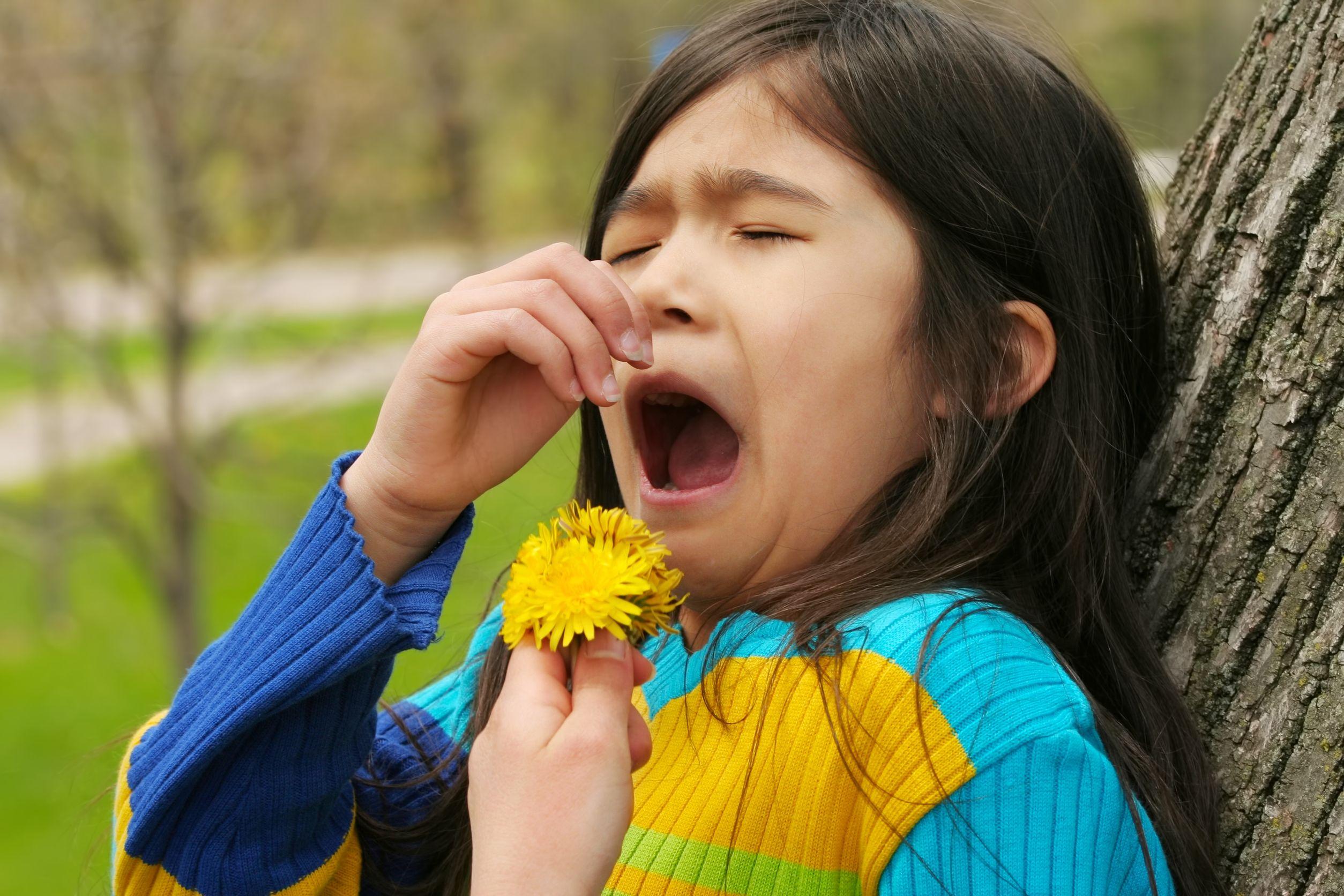 allergic to pollen